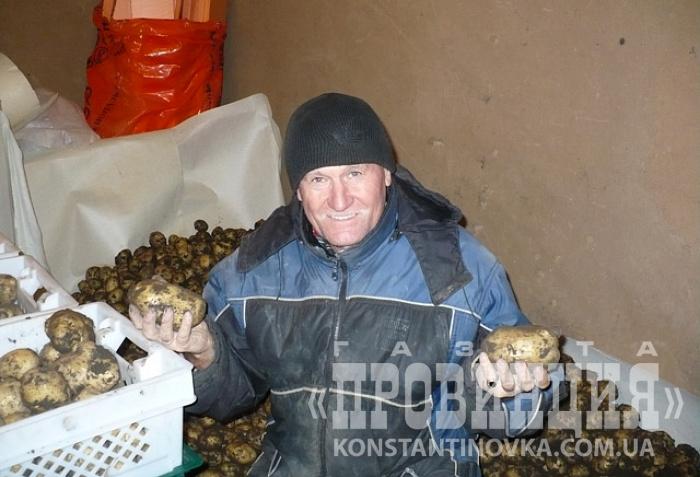 Нетрадиционные технологии выращивания картофеля 73